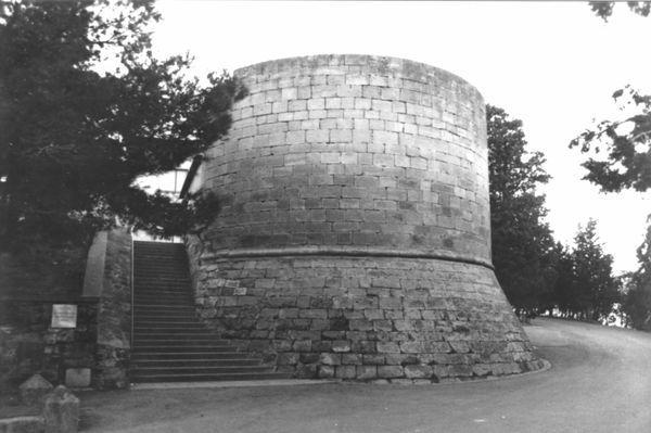 Restes del castell-Palau d'Arbeca (Garrigues) 2004. Autor:  Àngel Lafuente Revuelto, Andreu Moya i Garra. Generalitat de Catalunya, Departament de Cultura.
