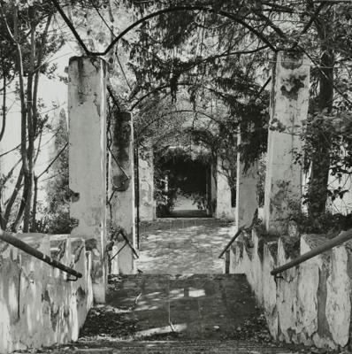 Vista del jardí del Balneari de Cardó, Benifallet( Baix Ebre) 1985. Autor: Marta Povo. Fons: Calaix, Generalitat de Catalunya.